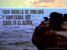 Toda-rodilla-640